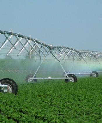 Irrigation System Design and Management