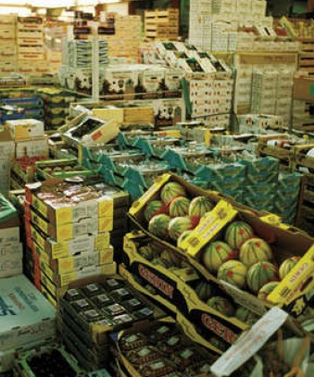 International Trade in Agriculuture