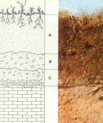 Classification and Geotechnical Properties of Rocks and Soils