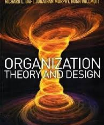 organisational theory and practice