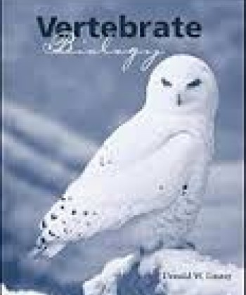 higher vertebrate biology