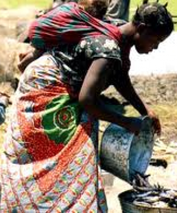 Dynamics of African Livelihoods