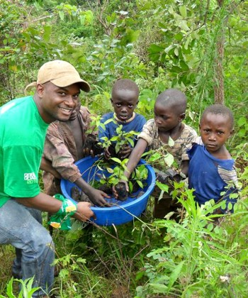 Participatory Development of Forestry Projects