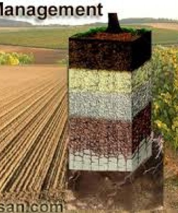 SOIL PRODUCTIVITY MANAGEMENT