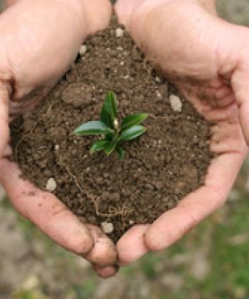 Soil Science Practicals