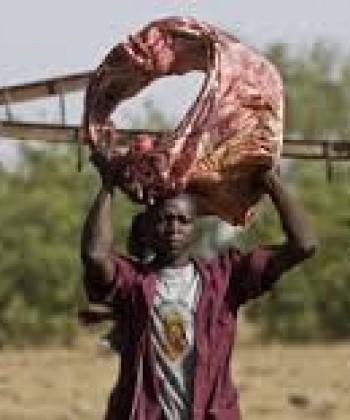 Livestock Trade I