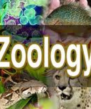 ZOOLOGY AND ANIMAL PHYSIOLOGY